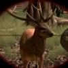 Wild Buck Hunter Reloaded