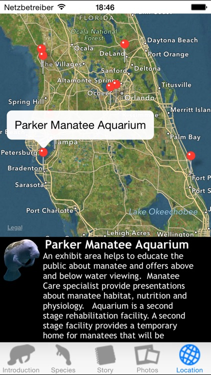 Manatees screenshot-4