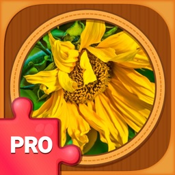 Jigsaw Puzzle Games PRO: Brain Training Jigsaws