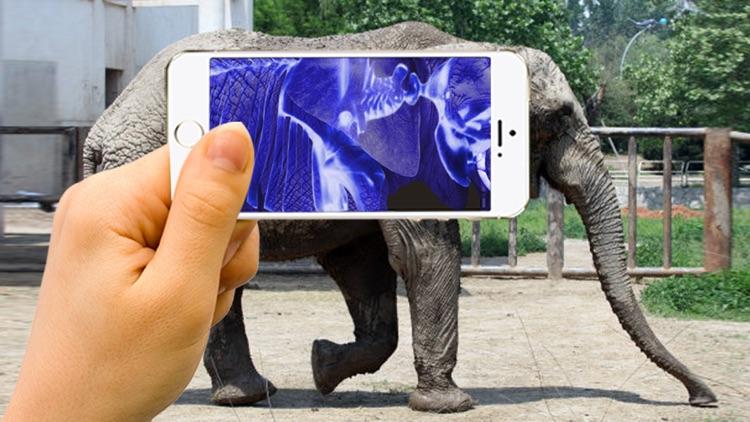 Xray Animal Scanner screenshot-3
