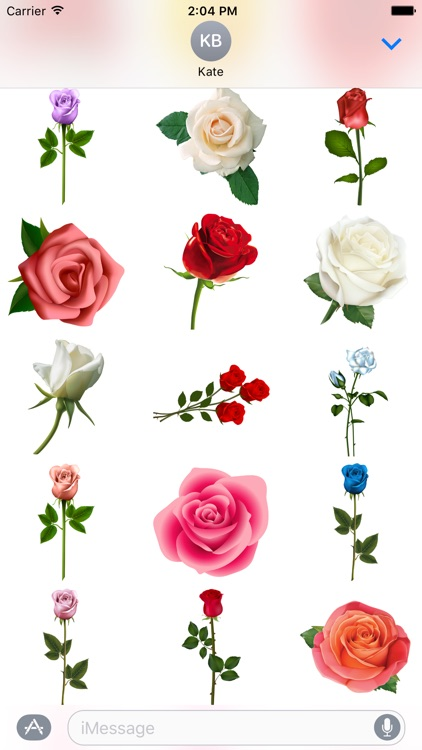 Hearts & Roses to Love Stickers for iMessage screenshot-4