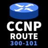 CCNP Route 300-101 Implementing IP Routing Exam - iPhoneアプリ
