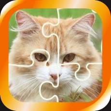 Activities of Jigsaw puzzle - cute cats