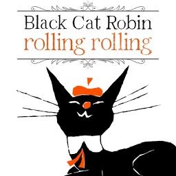 Black Cat Robin (Picture book fairy tale)
