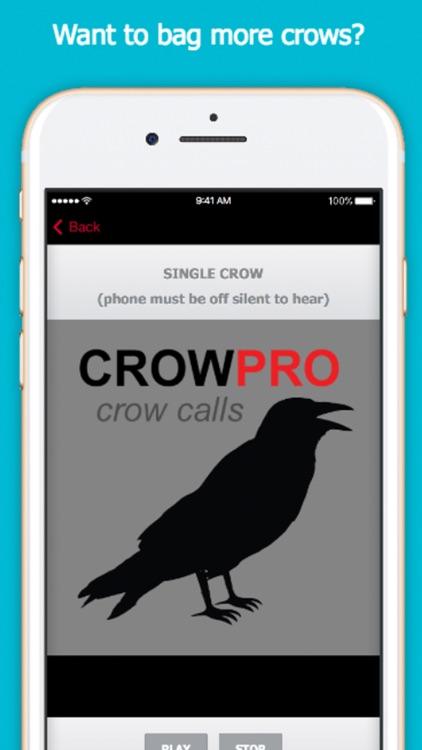 Crow Calls for Hunting screenshot-0