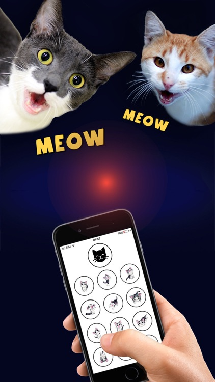 Cat Translator Deluxe - Talk to your Cat