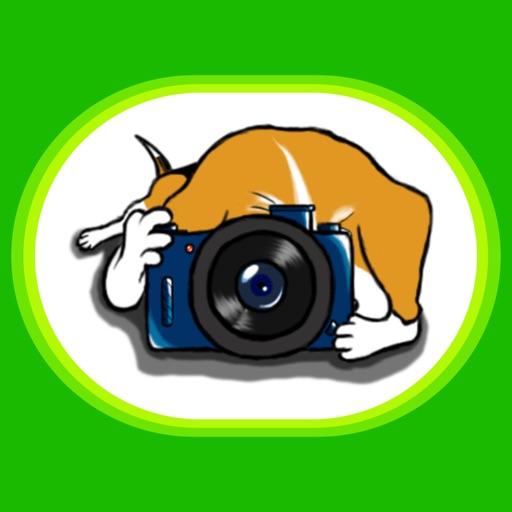 BeagleMoji - Beagle Dog Emoji Stickers