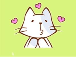 Friendly Cat!