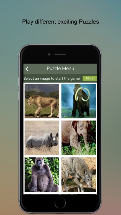 Endangered Animals SMART Guide screenshot-3