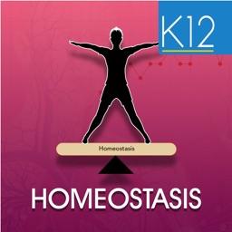 Homeostasis Biology