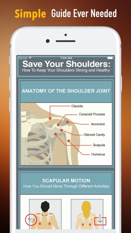 Healthy Shoulder 101-Preventing Frozen Shoulder