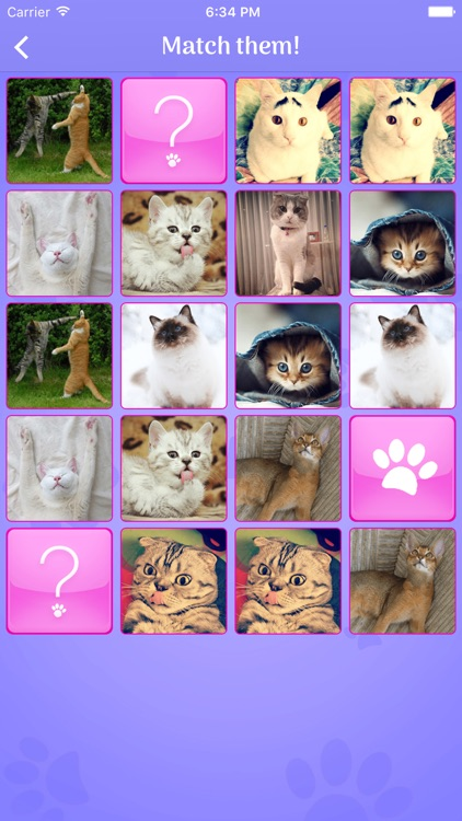 Cute Cats Memory Matching Game