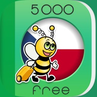 Codes for 5000 Phrases - Learn Czech Language for Free Hack