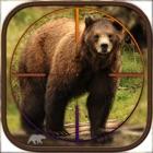 Bear Hunting - Challenge icon