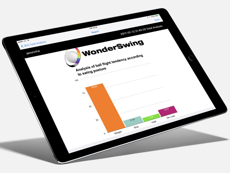 WonderSwingPro screenshot-3