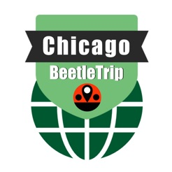 Chicago travel guide offline city metro train map on the App Store on