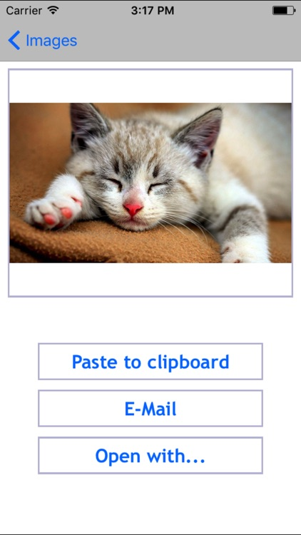 iClipboard - Clipboard manager