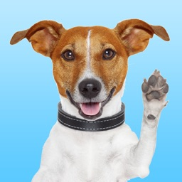 JackMoji - Stickers & Keyboard for Jack Russells