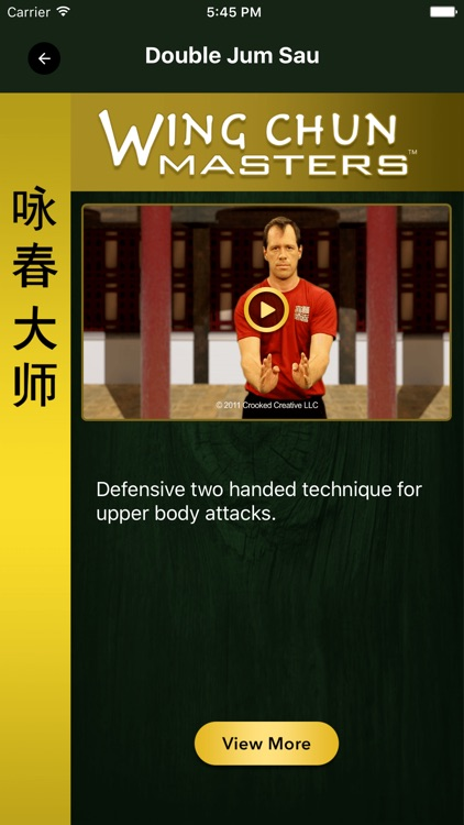 Wing Chun Masters 2 - HD screenshot-2