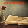 txt小说下载器和阅读器(最新)