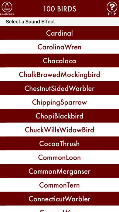 100BIRDS + RINGTONES Bird Calls Tweets Sounds screenshot one