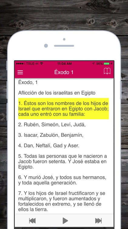 Santa Biblia Reina Valera 1960 Gratis en Español screenshot-4