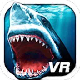 VR Shark
