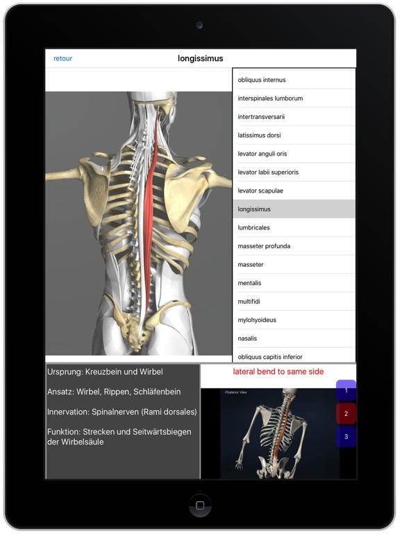 Visual Anatomy App - Preisentwicklung und Preisalarm | AppTicker