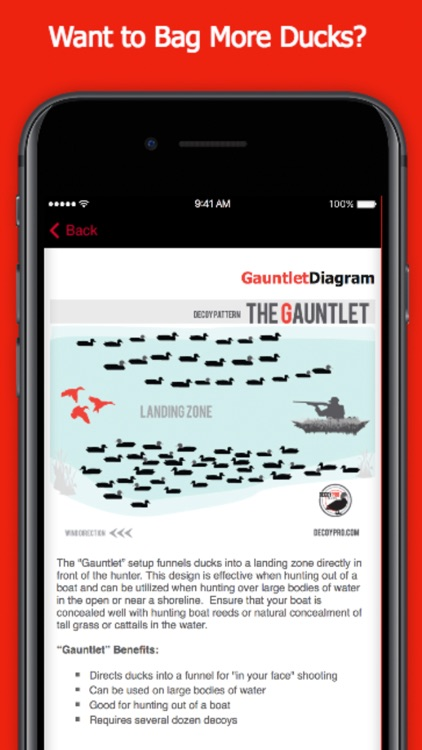 Duck Hunting Spreads & Diagrams - Duck Hunting App