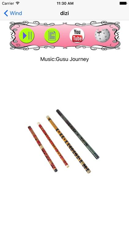 Chinese Instruments (English Version) screenshot-3