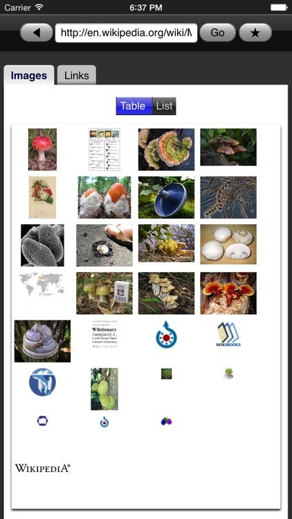 Web Images Lite
