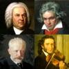 古典音乐的著名作曲家 - 肖像测验