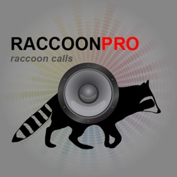 Raccoon Sounds for Predator Hunting