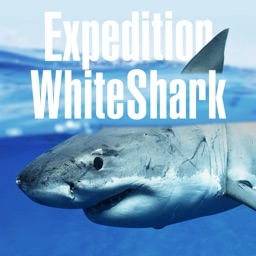 Expedition White Shark (iPad)