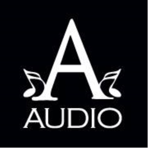 A-Audio Headphones