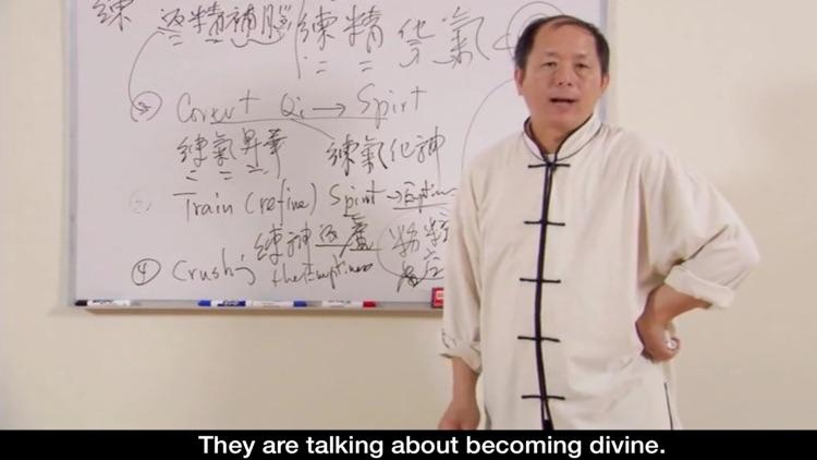 Qigong Keypoints Video Lesson screenshot-3