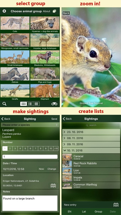 Mammal Guide of Southern Africa screenshot-4