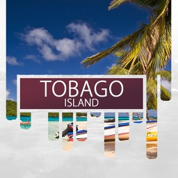 Tobago Island Travel Guide