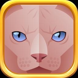 Sphynx Cat - Cute Sphynx Emojis Set