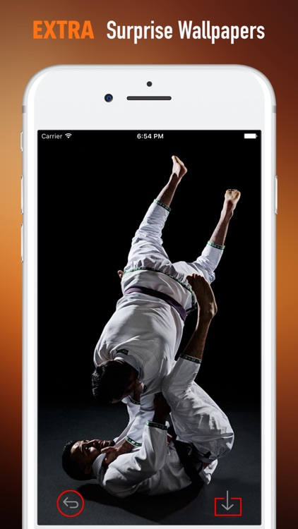 Taekwondo Wallpapers HD-Quotes and Art Pictures