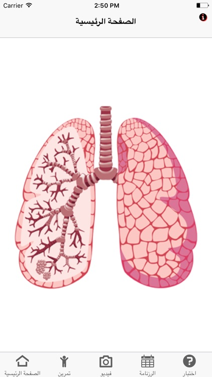 Asthma Assessment