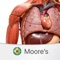 Boost your score and your understanding of clinically relevant anatomy with Moore's Anatomy Clinical Flash Cards