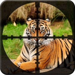 Forest Animal Hunting : Pro Shooting GAme