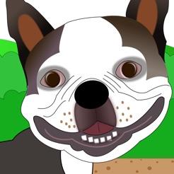 Lennu Run Cute Dog Running Game On The App Store