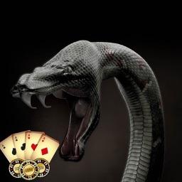 snake casino