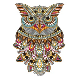 Owl Floral Coloring Book For Adult Relaxation Game