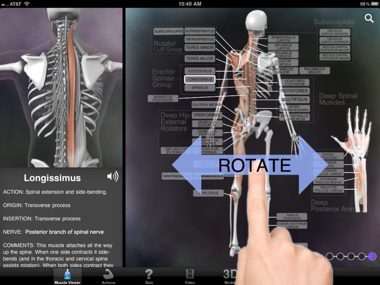 Muscle & Bone Anatomy 3D screenshot-0