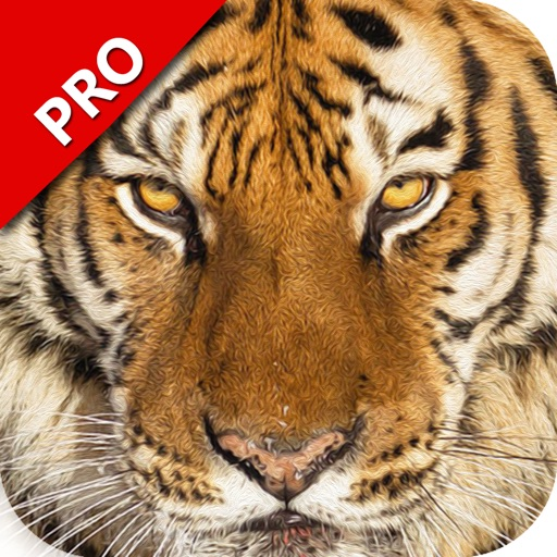 Ultimate Revenge of Wild Cats: Tiger