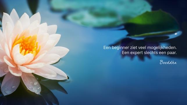 Citaten Filosofen : Wijsheid van boeddha in de app store