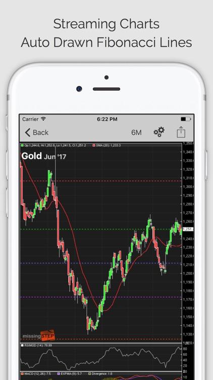 Commodity Trader Pro (ms)